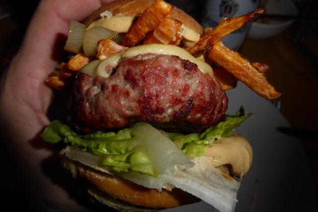 Burger_Schneckenhäuser_2016-11-05_035.jpg